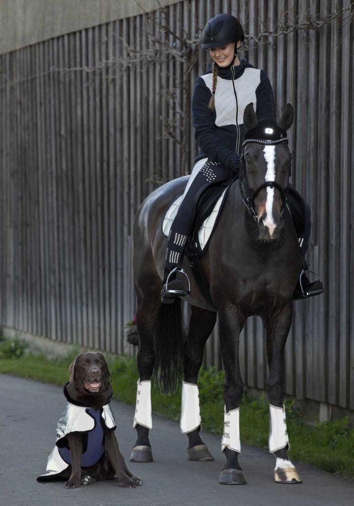 Refleeterende kleding ruiter paard hond