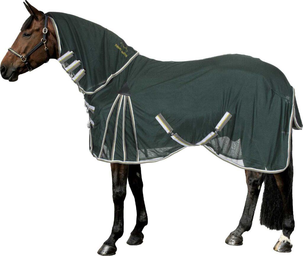 Pferd mit grüner Fliegendecke