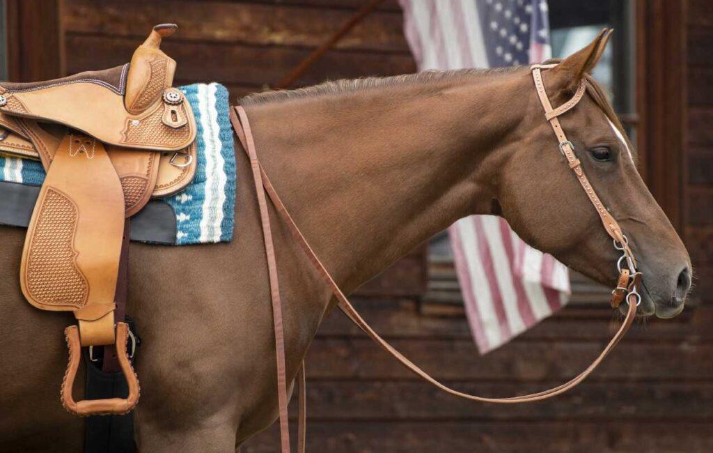 Westernpferd vor Blockhütte mit amerikanischer Flagge